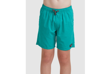 YOUTH SALTY DOGS BOARDSHORT GREEN