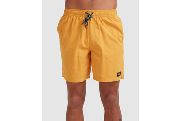 SALTY DOGS BOARDSHORT GOLD